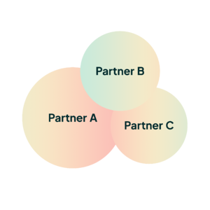 network_overlapping_partners